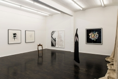 installation-view1
