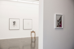 installation-view7